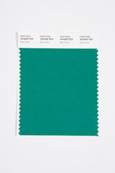 Pantone Smart 18-5425 TCX Color Swatch Card, Bear Grass