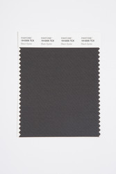 Pantone Smart 19-0205 TCX Color Swatch Card, Black Oyster