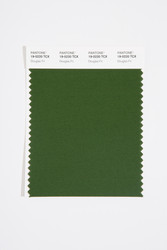 Pantone Smart 19-0220 TCX Color Swatch Card, Douglas Fir