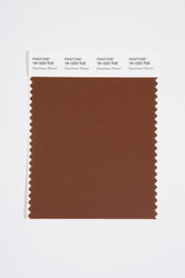 Pantone Smart 19-1223 TCX Color Swatch Card, Downtown Brown