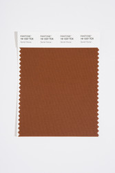 Pantone Smart 19-1227 TCX Color Swatch Card, Sorrel Horse
