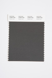 Pantone Smart 19-3912 TCX Color Swatch Card, Volcanic Ash