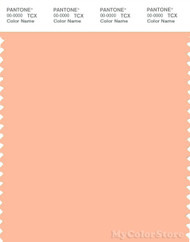 PANTONE SMART 13-1021X Color Swatch Card, Prairie Sunset