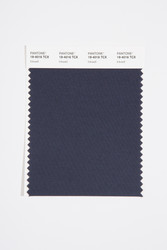 Pantone Smart 19-4016 TCX Color Swatch Card, Inkwell
