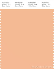 PANTONE SMART 13-1022X Color Swatch Card, Caramel Cream