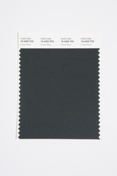 Pantone Smart 19-4405 TCX Color Swatch Card, Forest River