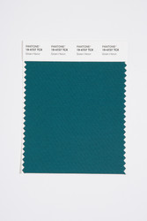 Pantone Smart 19-4727 TCX Color Swatch Card, Green Heron