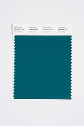 Pantone Smart 19-4918 TCX Color Swatch Card, Spruced Up