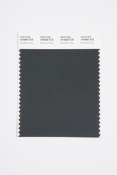 Pantone Smart 19-5002 TCX Color Swatch Card, Woodland Gray