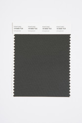 Pantone Smart 19-5005 TCX Color Swatch Card, Unexplored
