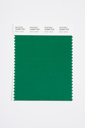 Pantone Smart 19-6027 TCX Color Swatch Card, Green Jacket
