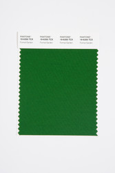Pantone Smart 19-6350 TCX Color Swatch Card, Formal Garden