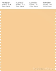PANTONE SMART 13-1025X Color Swatch Card, Impala