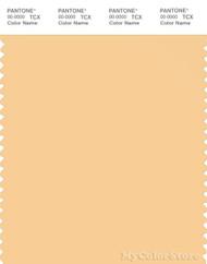 PANTONE SMART 13-1025X Color Swatch Card, Impala
