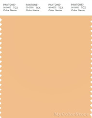 PANTONE SMART 13-1027X Color Swatch Card, Apricot Cream