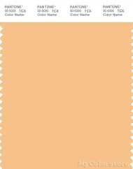 PANTONE SMART 13-1030X Color Swatch Card, Sunburst