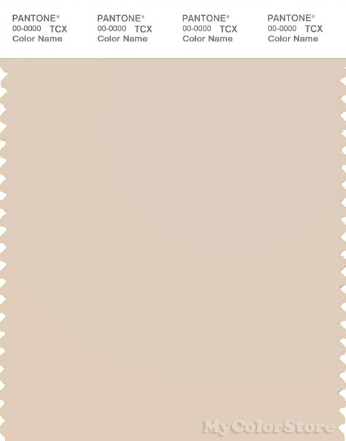 PANTONE SMART 13-1106X Color Swatch Card, Sand Dollar