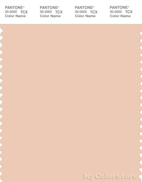 PANTONE SMART 13-1109X Color Swatch Card, Bisque