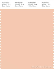 PANTONE SMART 13-1114X Color Swatch Card, Bellini