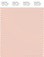 PANTONE SMART 13-1404X Color Swatch Card, Pale Dogwood