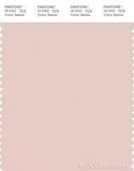 PANTONE SMART 13-1504X Color Swatch Card, Peach Blush