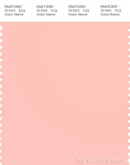 PANTONE SMART 13-1510X Color Swatch Card, Impatiens Pink
