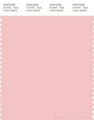 PANTONE SMART 13-2005X Color Swatch Card, Strawberry Cream