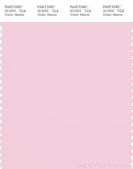 PANTONE SMART 13-2807X Color Swatch Card, Ballerina