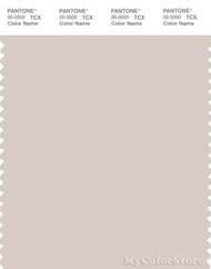 PANTONE SMART 13-3801X Color Swatch Card, Crystal Gray
