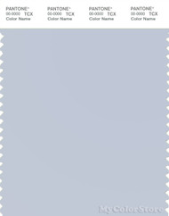 PANTONE SMART 13-4110X Color Swatch Card, Arctic Ice