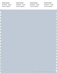 PANTONE SMART 13-4111X Color Swatch Card, Plein Air