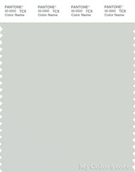 PANTONE SMART 13-4305X Color Swatch Card, Foggy Dew
