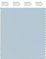 PANTONE SMART 13-4308X Color Swatch Card, Baby Blue