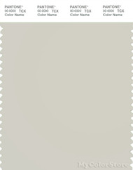 PANTONE SMART 13-4403X Color Swatch Card, Silver Birch