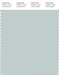 PANTONE SMART 13-4405X Color Swatch Card, Misty Blue