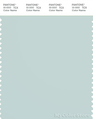 PANTONE SMART 13-4804X Color Swatch Card, Pale Blue