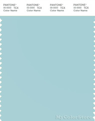 PANTONE SMART 13-4809X Color Swatch Card, Plume