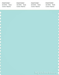 PANTONE SMART 13-4909X Color Swatch Card, Blue Light