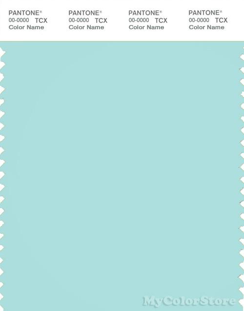 PANTONE SMART 13-4909X Color Swatch Card, Blue Light