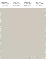 PANTONE SMART 13-5304X Color Swatch Card, Rainy Day
