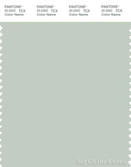 PANTONE SMART 13-5305X Color Swatch Card, Pale Aqua