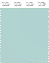 PANTONE SMART 13-5306X Color Swatch Card, Icy Morn