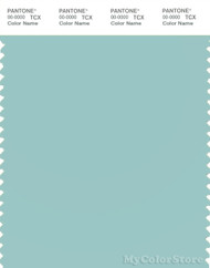 PANTONE SMART 13-5309X Color Swatch Card, Pastel Turquoise
