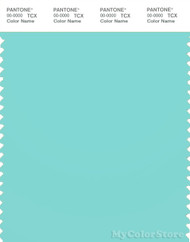 PANTONE SMART 13-5313X Color Swatch Card, Aruba Blue