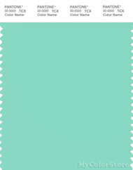 PANTONE SMART 13-5414X Color Swatch Card, Ice Green
