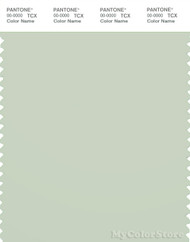 PANTONE SMART 13-6006X Color Swatch Card, Almost Aqua