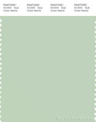 PANTONE SMART 13-6007X Color Swatch Card, Spray