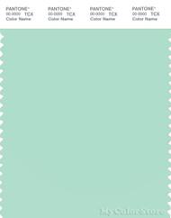 PANTONE SMART 13-6009X Color Swatch Card, Brook Green