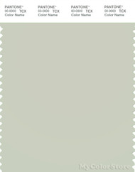 PANTONE SMART 13-6105X Color Swatch Card, Celadon Tint