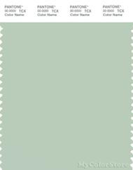 PANTONE SMART 13-6108X Color Swatch Card, Celadon